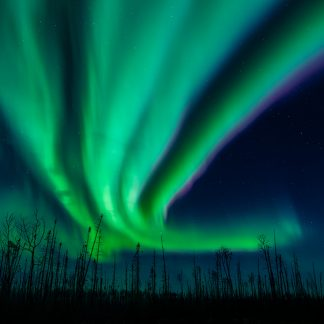 Northern Lights, Aurora Borealis, Fort McMurray Sky, RMWB aurora